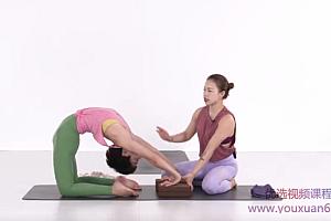 陈飞 后弯流瑜伽课程